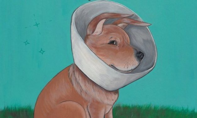 """<span class=""""quo"""">'</span>Killing Eve' Producer Sid Gentle Adapting Canine Punk Graphic Novel"""
